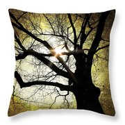 I Think I Shall Never See A Poem As Lovely As A Tree... Throw Pillow