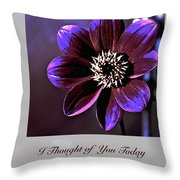 I Thought Of You Today Throw Pillow