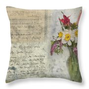 I Want The Twilight And You Throw Pillow
