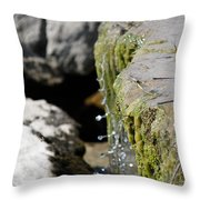 I Will Cherish Your Every Drop Throw Pillow