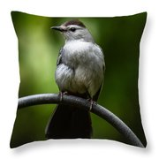 I Work Out Throw Pillow