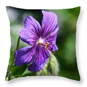 Iberian Geranium Throw Pillow