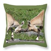 Ibex Doing Battle Throw Pillow