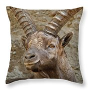 Ibex Pictures 40 Throw Pillow