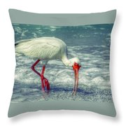 Ibis Feeding Throw Pillow