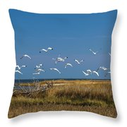 Ibis Flight Throw Pillow