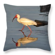Ibis In Reflection Throw Pillow