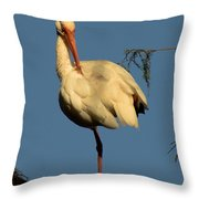 Ibis In The Morning Throw Pillow