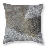 Ice 7 Throw Pillow