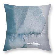 Ice Age... Throw Pillow