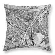 Ice Along Merced 1 Throw Pillow