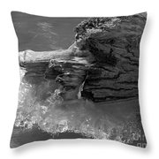 Ice Among The Floating Tree Throw Pillow