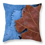 Ice And Life Throw Pillow