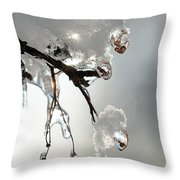 Ice And Snow-5739 Throw Pillow