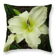 Ice Carnival Daylily Throw Pillow