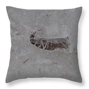 Ice Claw Throw Pillow