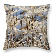 Ice Coated Bullrushes Throw Pillow