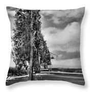 Ice Coated Tree Throw Pillow