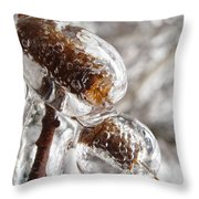 Ice Cocoons I Throw Pillow