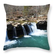 Ice Cold Beauty Throw Pillow