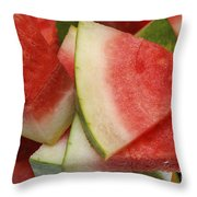 Ice Cold Watermelon Slices 2 Throw Pillow by Andee Design