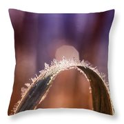 Ice Color Throw Pillow