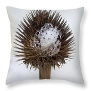 Ice Cone Throw Pillow