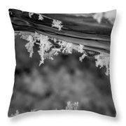 Ice Crystals Frozen In The River Throw Pillow
