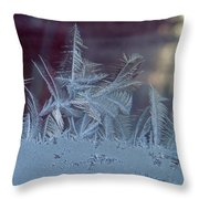 Ice Crystals Of Winter Throw Pillow