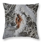 Ice Crystals On A Leaf Throw Pillow