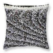 Ice Crystals On Wood Railing Throw Pillow