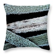 Ice Crystals Throw Pillow by Shirley Sirois