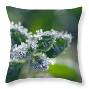 Ice Crystals With Stars Throw Pillow