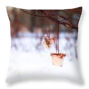 Ice Decorations IIi Throw Pillow