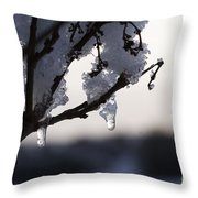 Ice Drop Throw Pillow