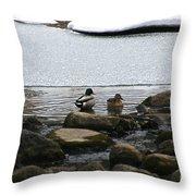 Ice Edges Throw Pillow