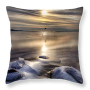 Ice Flag Throw Pillow