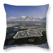 Ice Floes And Mountains Svalbard Norway Throw Pillow