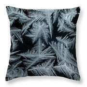 Ice-flowers Frost Pattern Tracery On Frost Window Throw Pillow