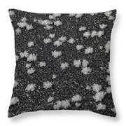 1m9335-ice Flowers On Black Ice Throw Pillow