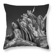Ice Formation Black And White Throw Pillow