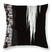 Ice Throw Pillow