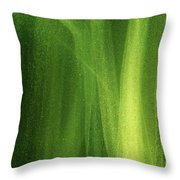 Ice On A Window With Light Painting That's Green Throw Pillow