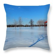 Ice On Snow Throw Pillow
