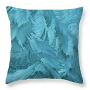 Ice Patterns Formed On Glass Throw Pillow