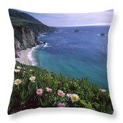Ice Plants On Big Sur Coast Throw Pillow