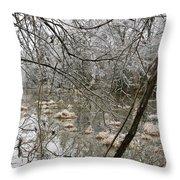 Ice Pond Throw Pillow