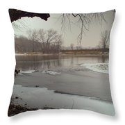 Ice River Throw Pillow