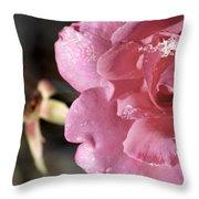 Ice Rose Throw Pillow