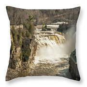 Ice Run Off Throw Pillow